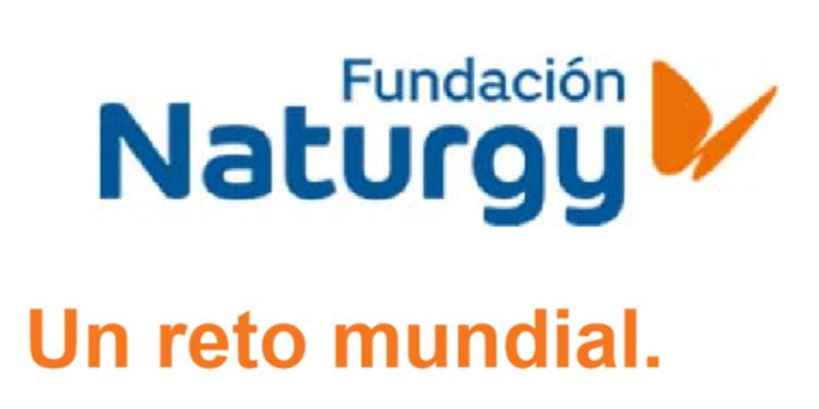 El Colegio San Agustín de Calahorra finalista en el II Certamen Efigy
